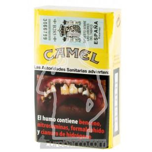 CAMEL 200 CIGARETTES CARTOON BOX